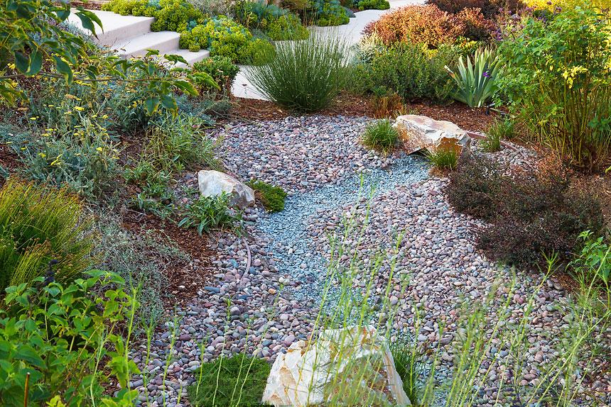 Garden - Bioswale