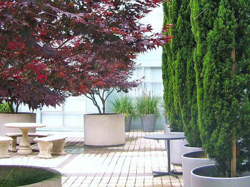 Services for Landscape Architects