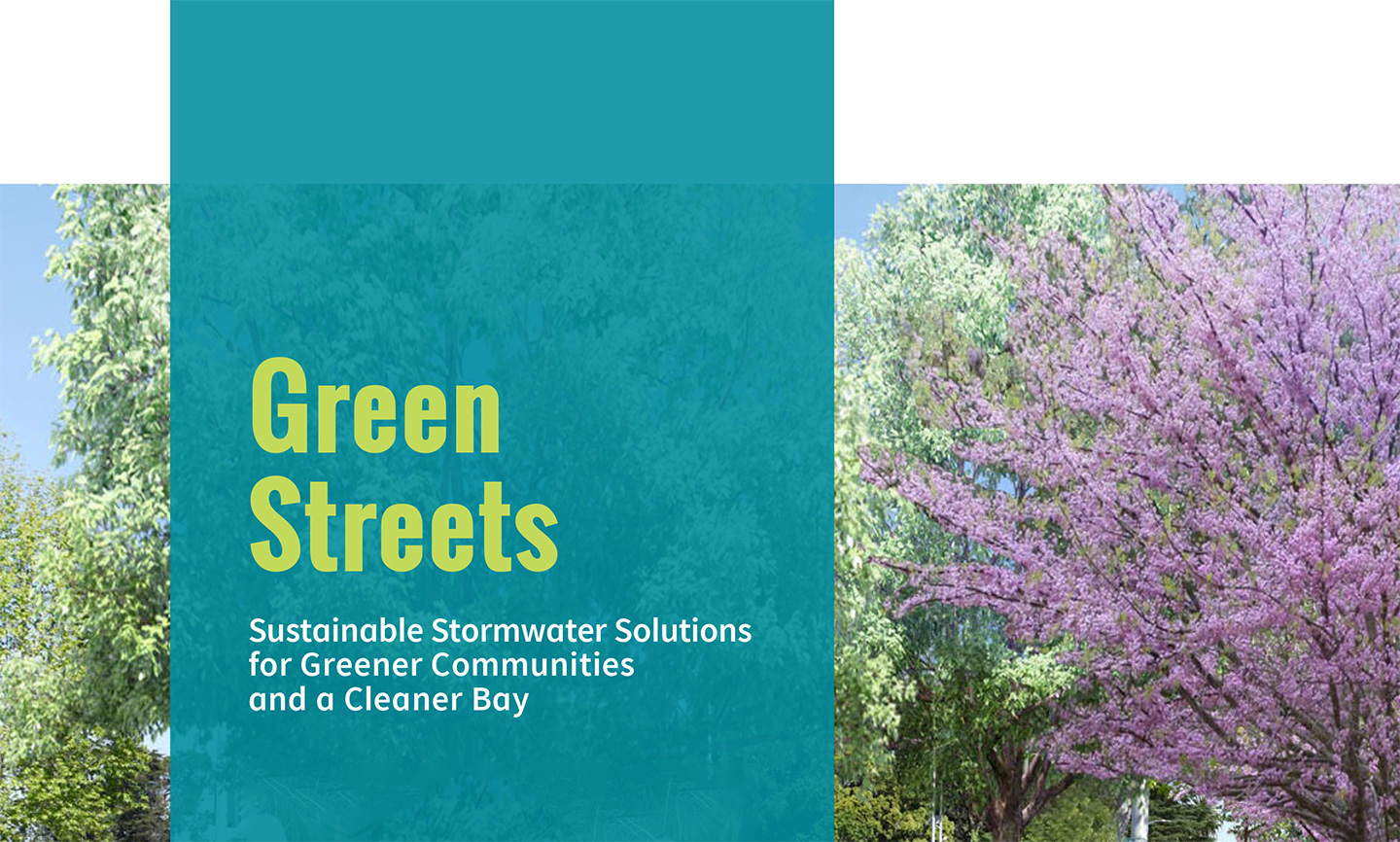 Green Streets Project