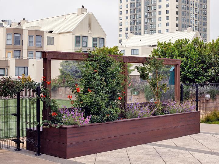 Fillmore Rooftop Garden