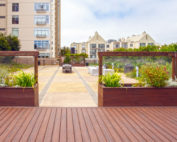 What are Rooftop Gardens