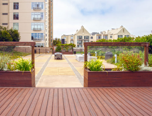 What are Rooftop Gardens?