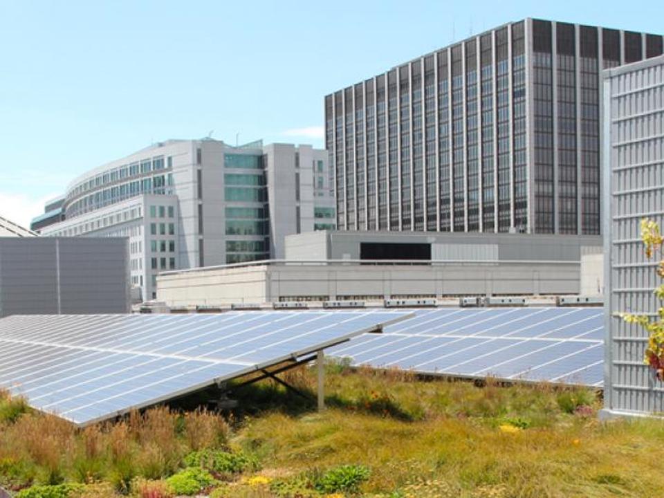 San Francisco's Better Roofs Mandate